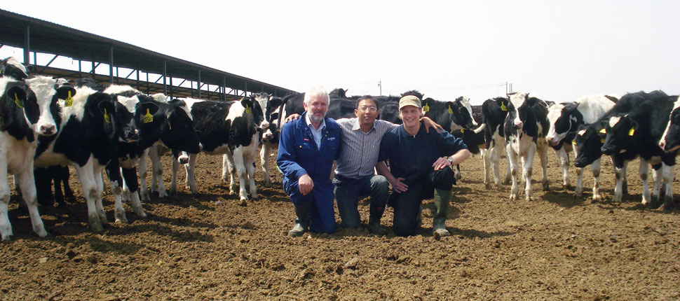 Peter Uttrup (left), milk quality advisor at SEGES, has success with putting on his work gear, when he is guiding farmers in China, where local advisors often wear suits on farm visits.